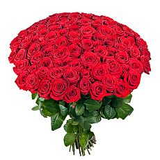 red roses 100
