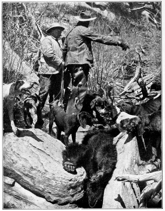 Death of the Big Bear