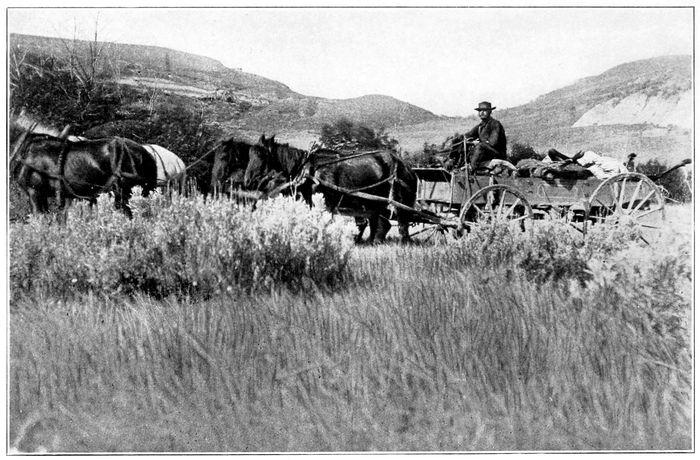 Ranch Wagon Returning from Hunt