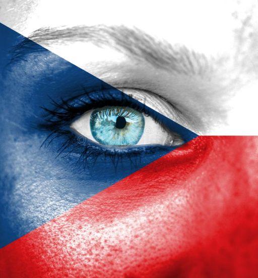 Czech translators